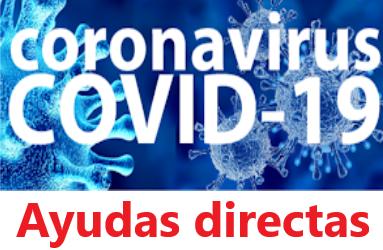 Líneas Covid-19 para reforzar la solvencia empresarial.